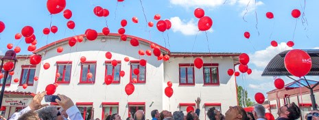 Picture showing a big amount of red balloons that have been raised by our customers in front of the LS telcom premises.